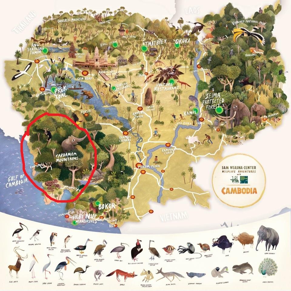 Cambodia: Development = Destruction Of National Parks